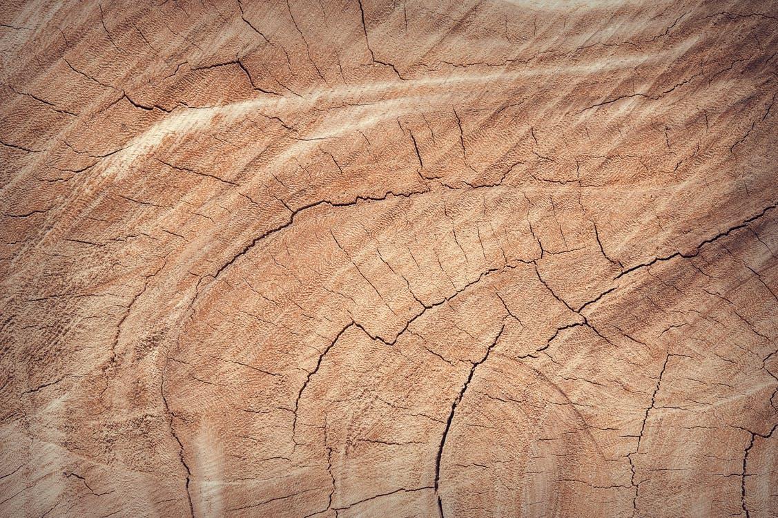 Aldi kiest voor duurzaam hout en papier de houtkrant for Hout voor traptreden